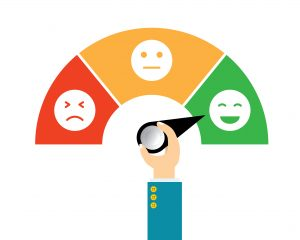 Customer Satisfaction Surveys